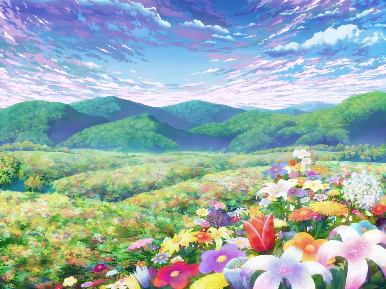 Kwiatowa polana 5693499055800320000275